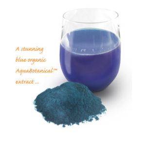 p-132-blue-majik-anti-inflammatory-401x401