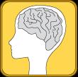 brain stem cells, stem cell supplements, neural stem cells, brain memory supplements, brain stem cell supplements