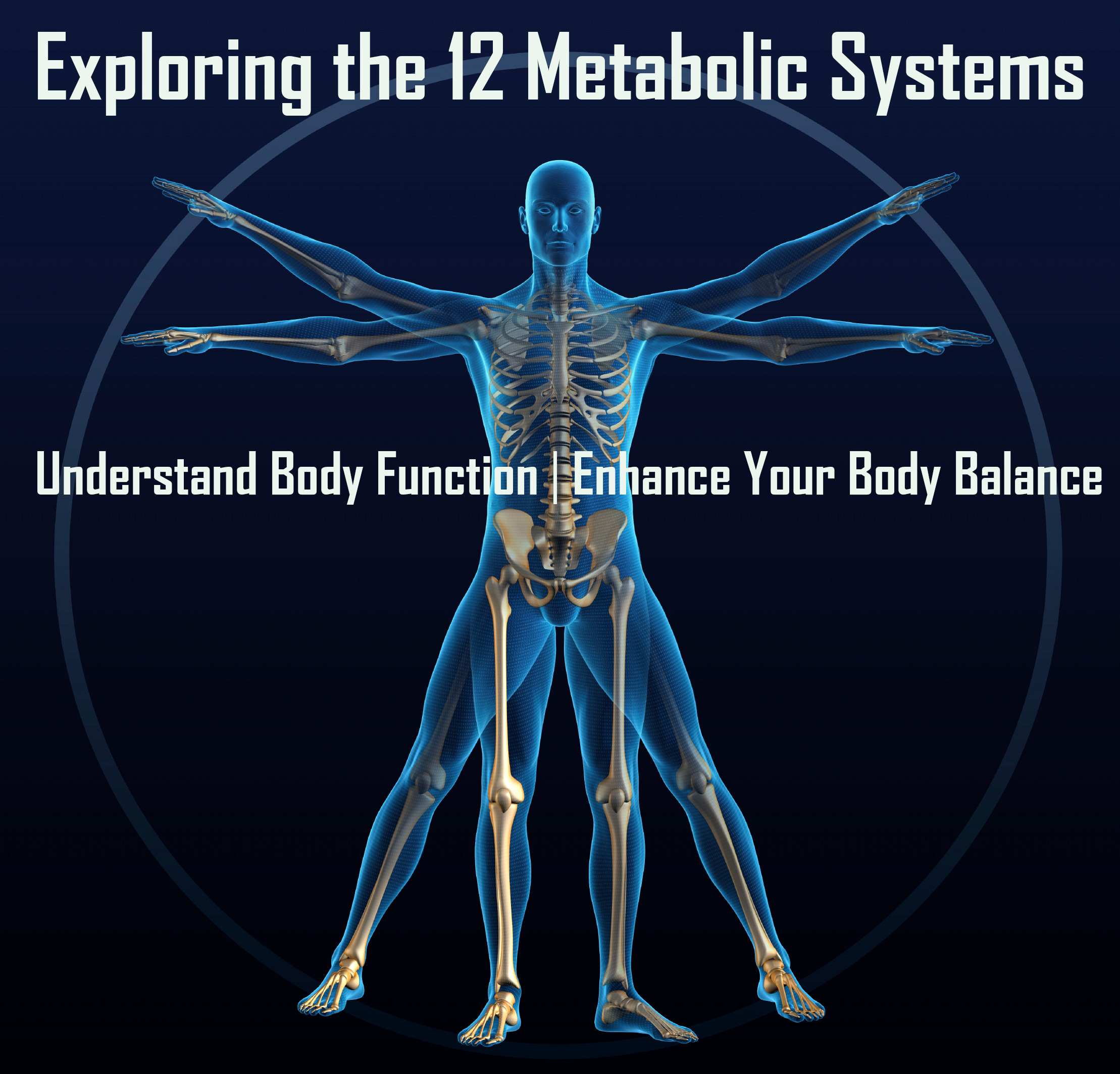 sports biomechanics and functional anatomy Joint function mechanical forces acting on connective tissue tension forces compression forces shear forces  anatomy and biomechanics of the musculoskeletal system.